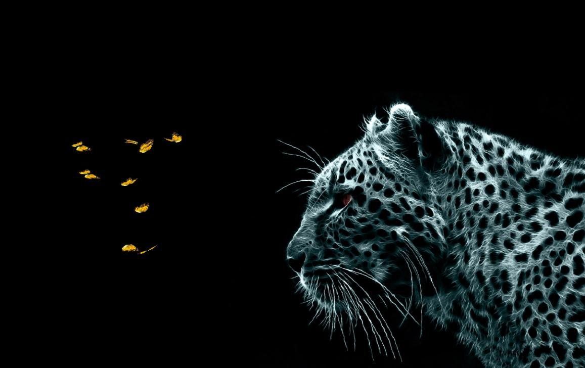 Download Fantastic Felines Animated Wallpaper DesktopAnimatedcom 1157x728