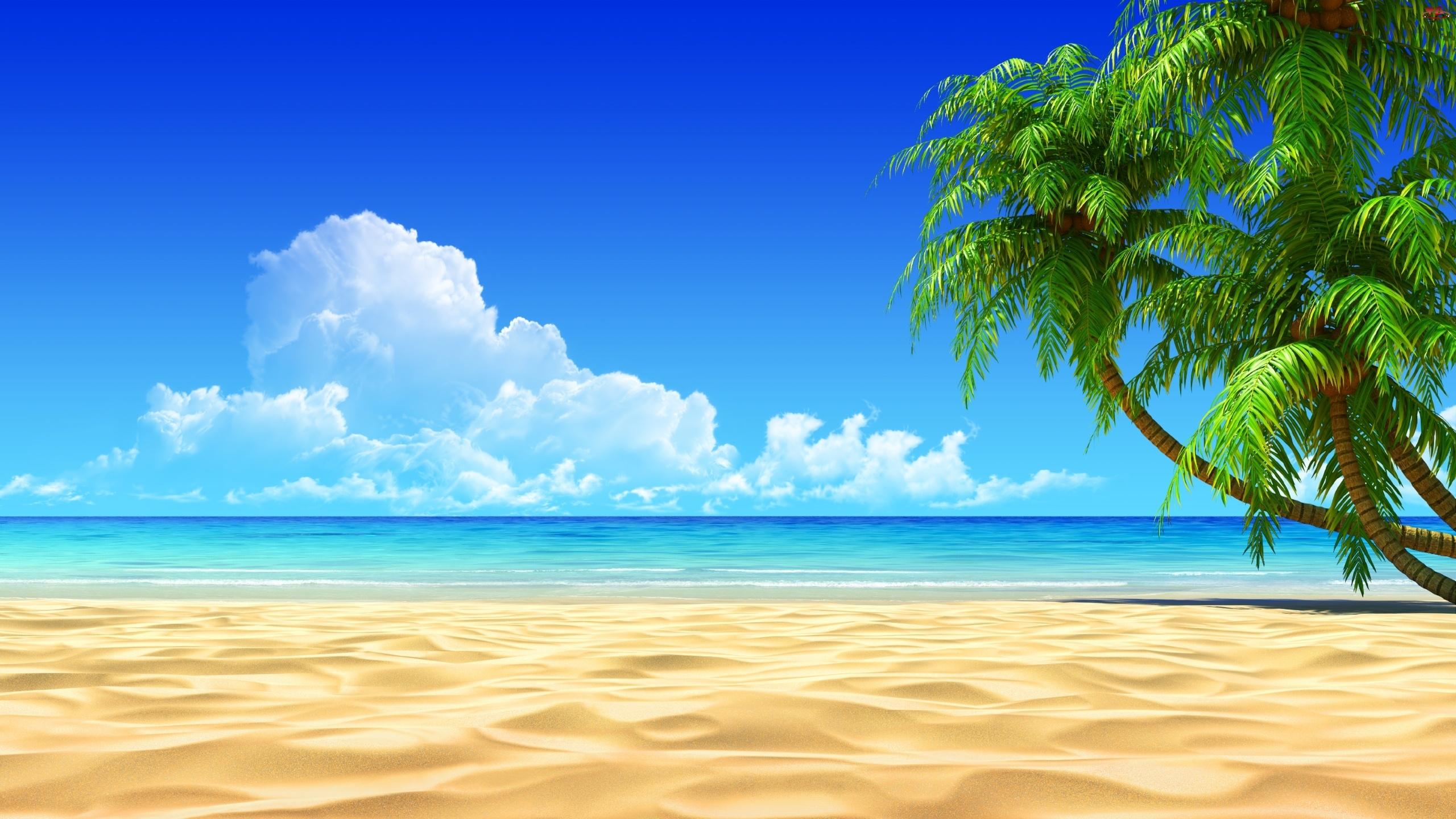 beach hd wallpapers beach hd wallpapers beach hd wallpapers beach 2560x1440