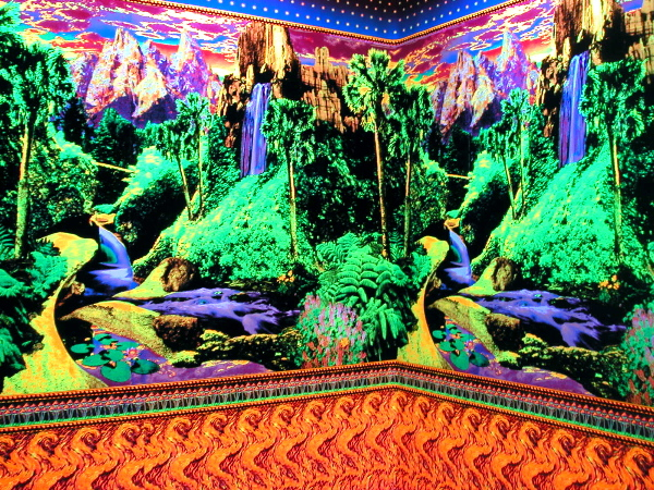 Virgil Marti Landscape Wallpaper with Star Border and Shrooms and 600x450