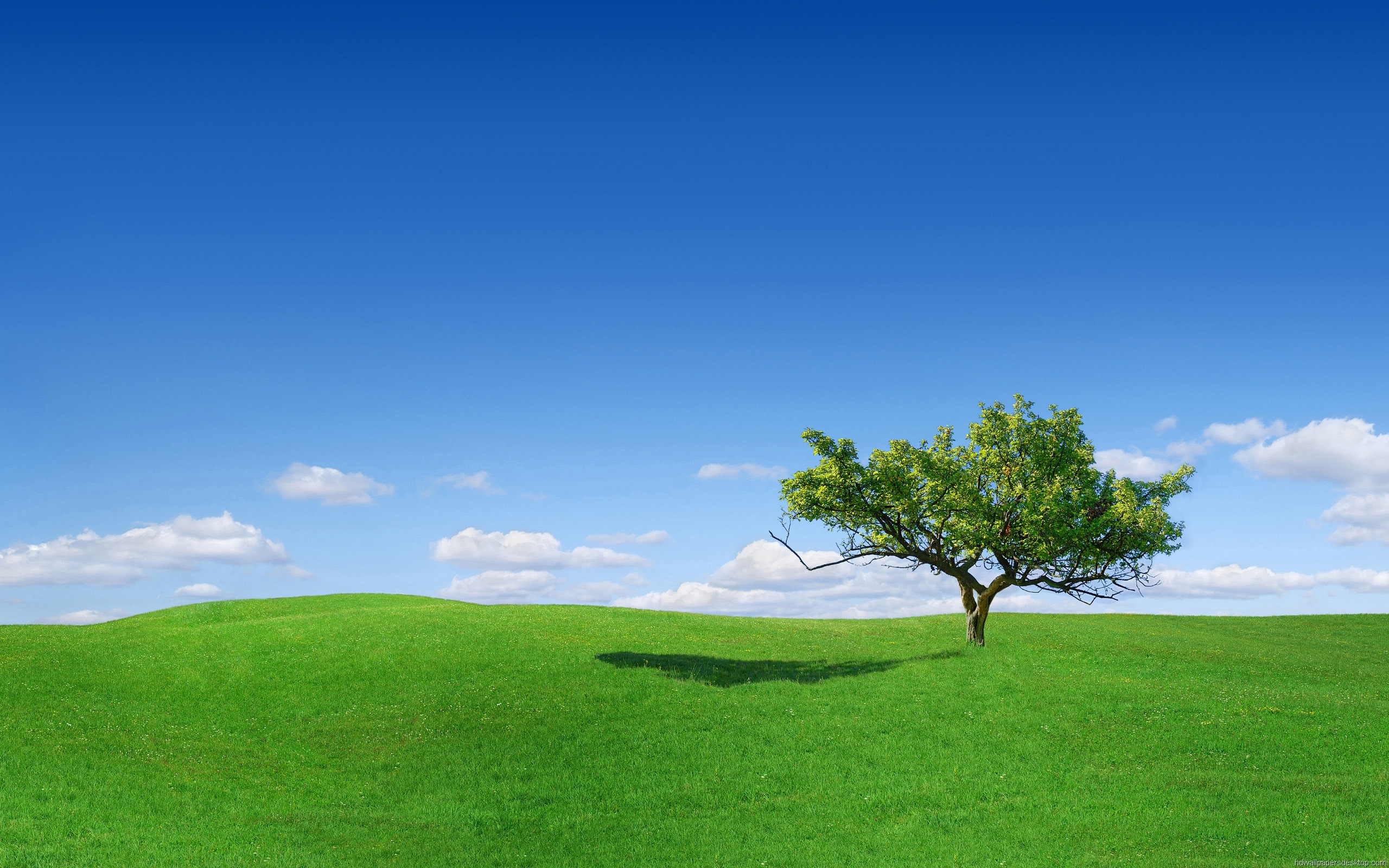 Free Download Landscape Wallpapers Hd Widescreen Desktop