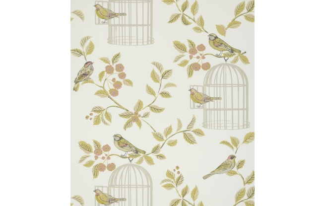 Song Bird Wallpaper The Home Showroom 655x415