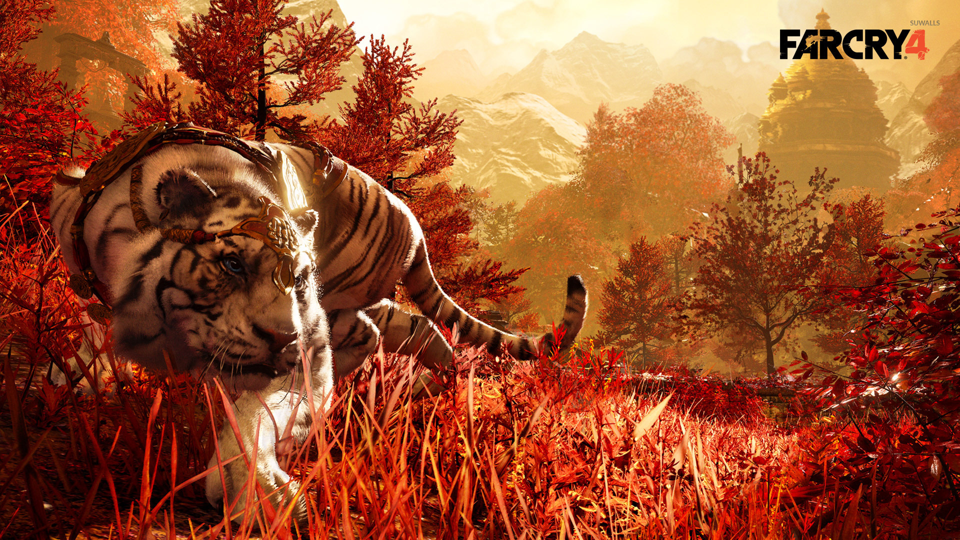 Free Download Far Cry 4 Wallpaper Game Wallpapers 32217 1920x1080