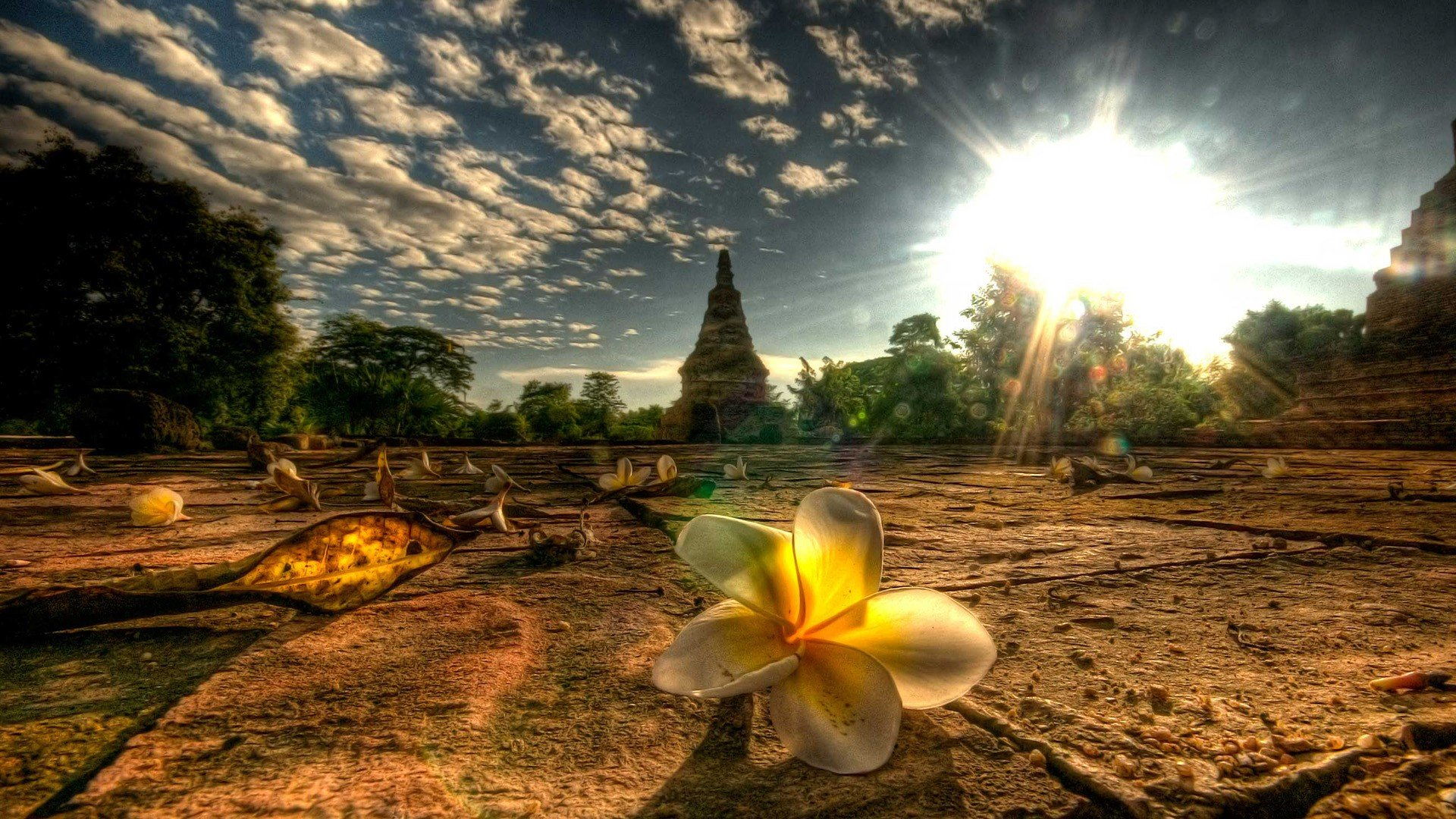 43 Thailand Wallpaper Desktop On Wallpapersafari