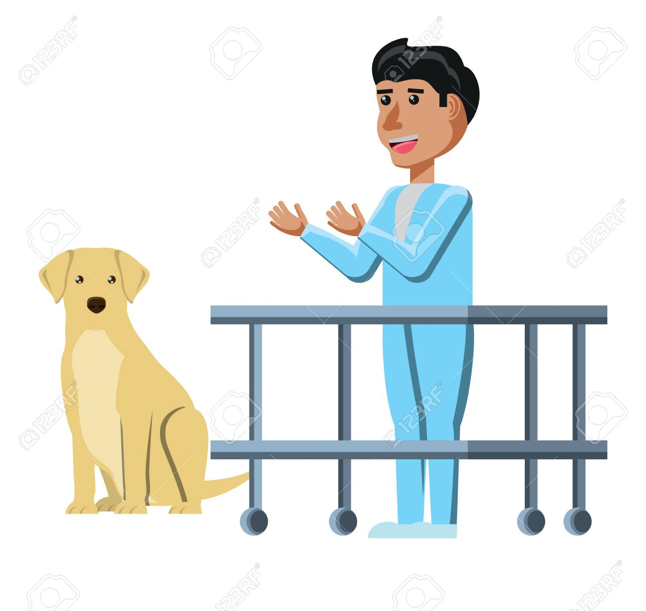 Vet Doctor And Labrador Over White Background Vector Illustration 1300x1229