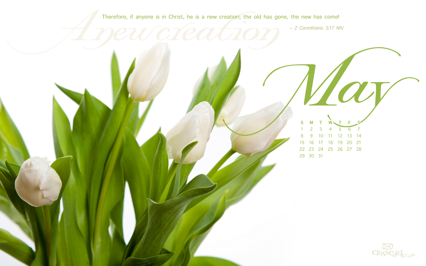 URL httpwwwcrosscardscoukwallpapermonthly calendarsmayp2 1440x900