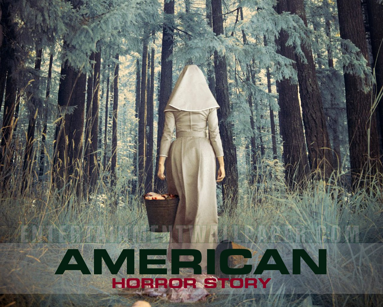 American Horror Story Wallpaper HD