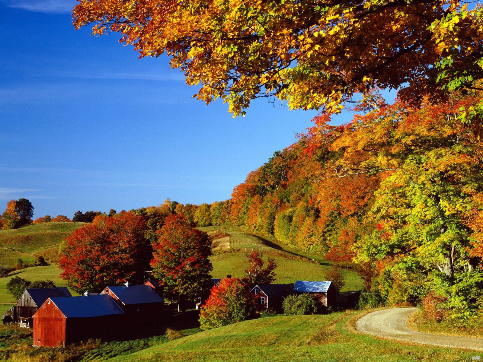 Woodstock In Autumn Vermont   Nature Wallpaper Image featuring Autumn 1600x1200