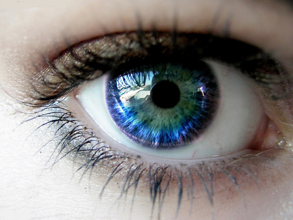 beautiful eyes beautiful eyes beautiful eyes 1024x768