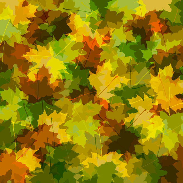 Camo Leaves Wall Mural   Contemporary   Wallpaper   by Murals Your Way 640x640