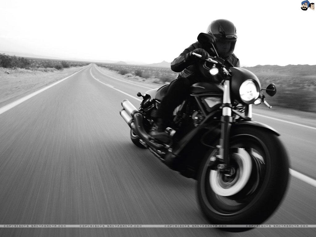 Download Harley Davidson HD Wallpaper 48 1024x768