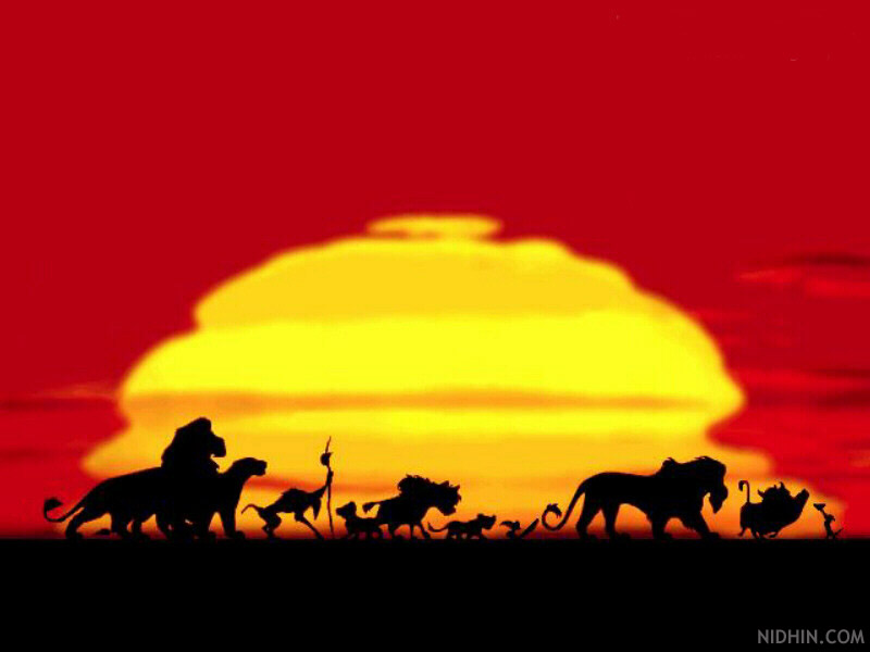 My Top Collection Lion king wallpapers 4 800x600