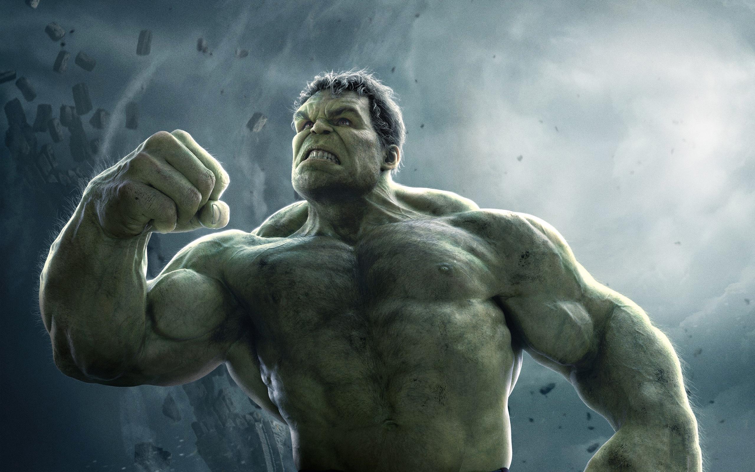 Hulk Avengers 2 HD Wallpaper Background Images 2560x1600