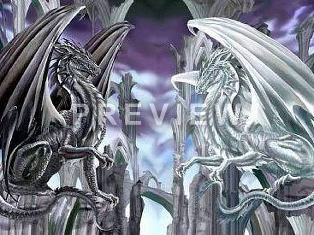 Black And White Dragon Wallpaper White Dragon Black Dragon 640x479