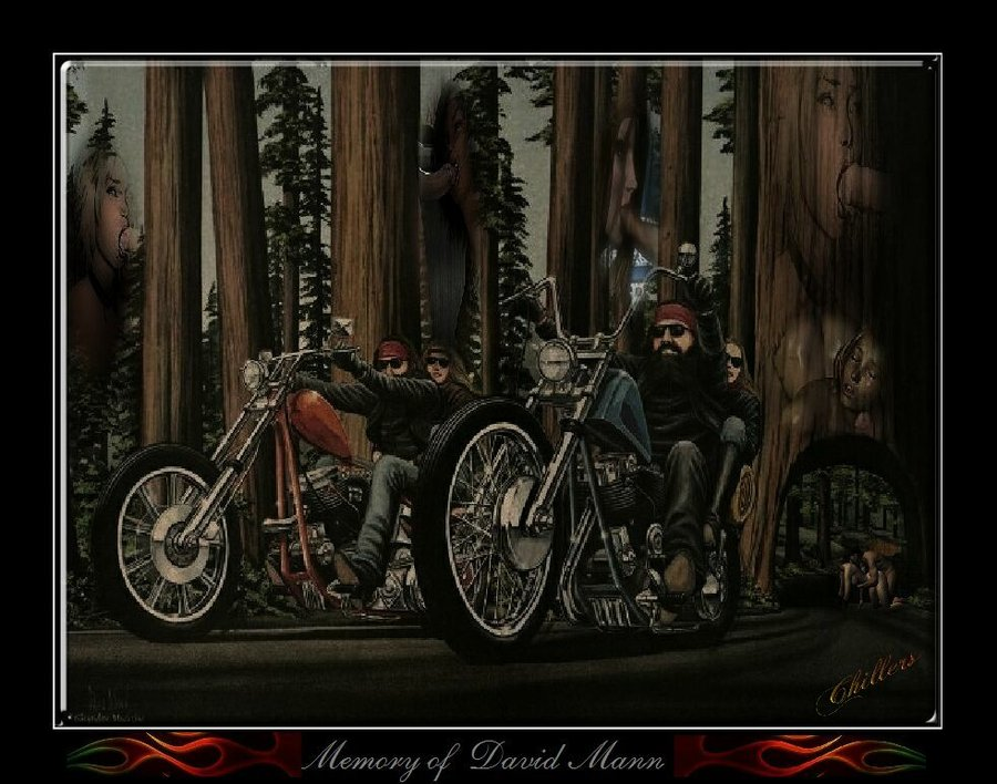 Image Name David Mann2 by chillin51 900x708