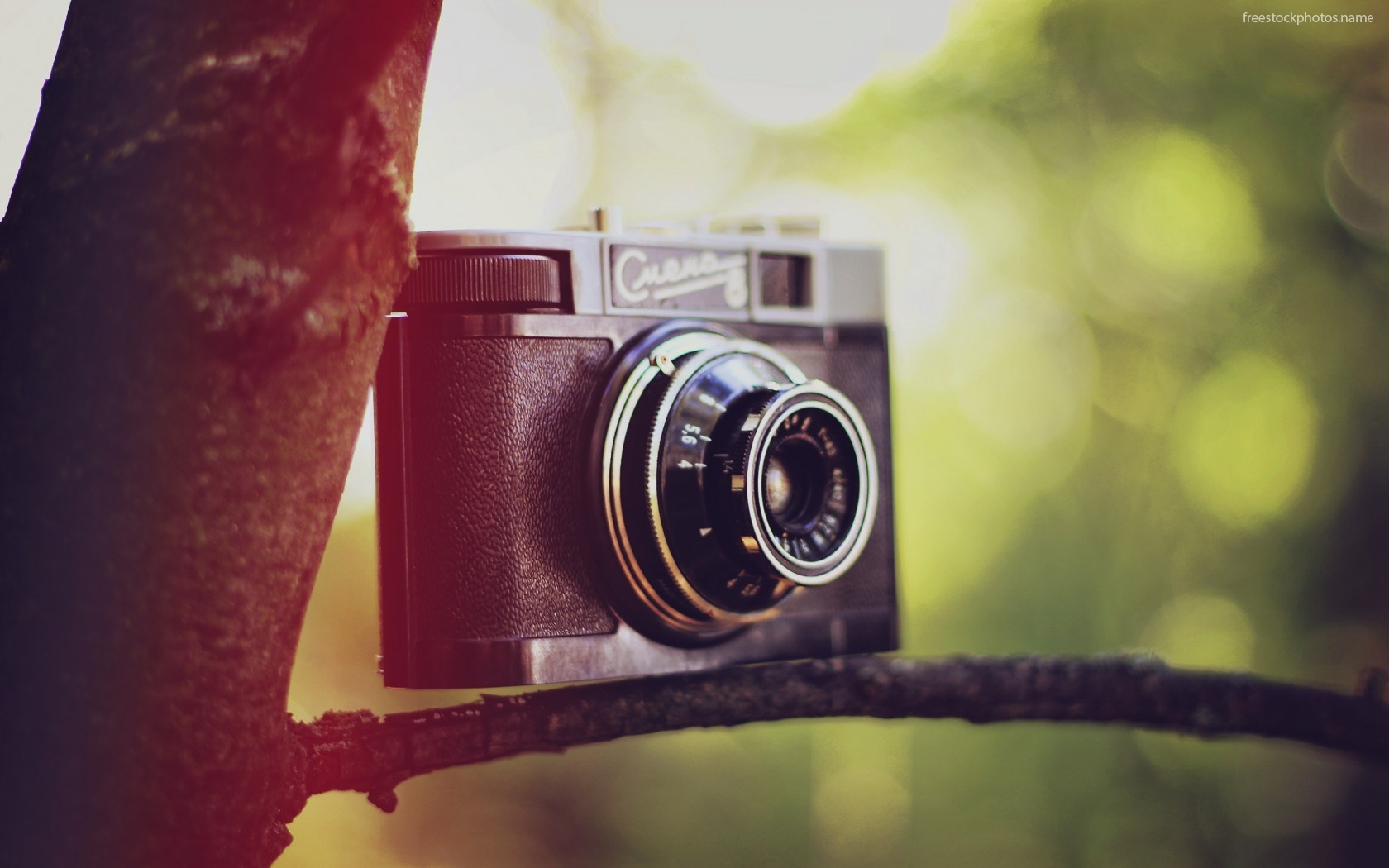 Download Stock Photos of cute camera for wallpaper images photography 1680x1050