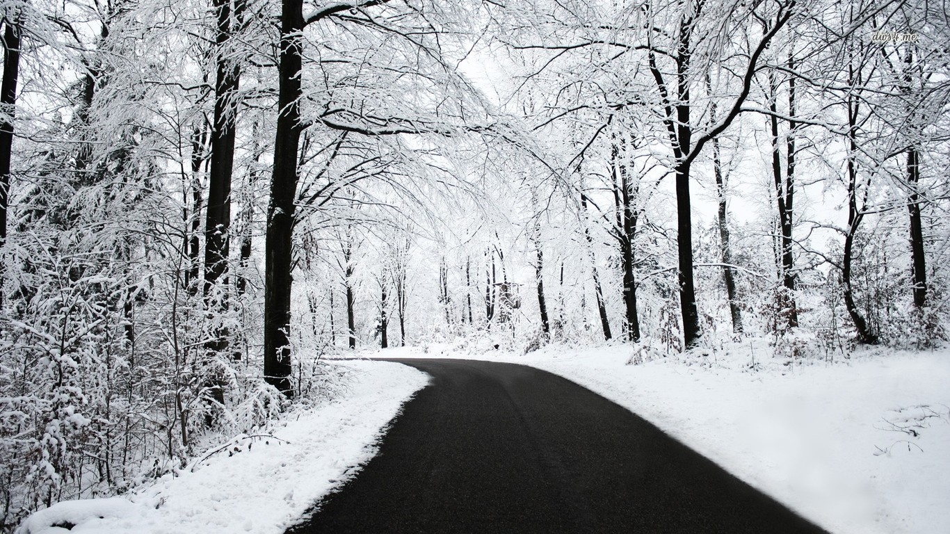 Snowy forest road wallpaper   Nature wallpapers   13327 1366x768