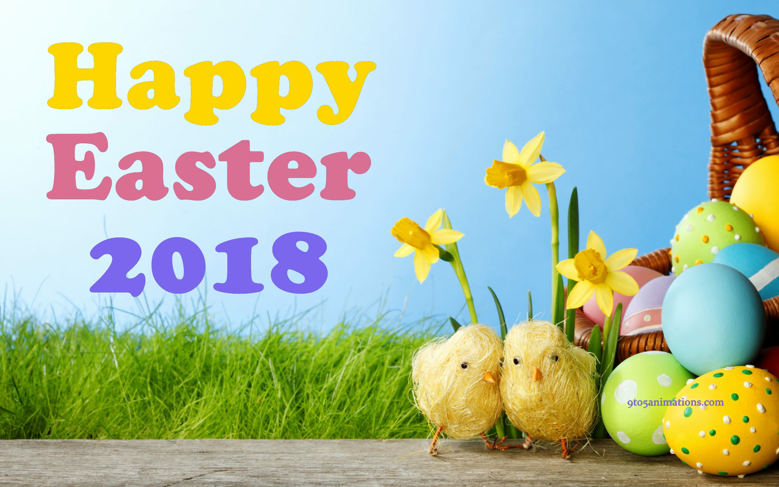 Easter Eggs With Basket Wishes HD Wallpaper 2560x1600
