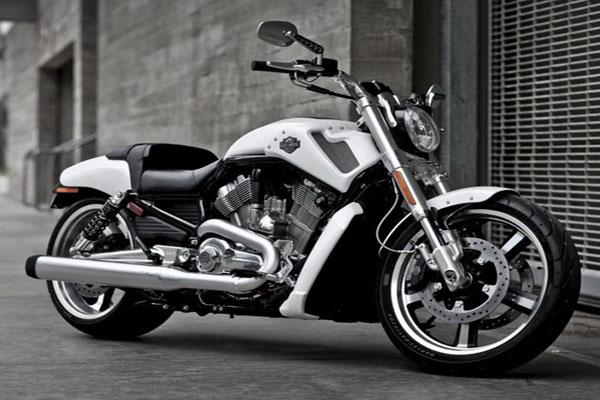 2011 Harley Davidson V Rod Muscle VRSCF 600x400