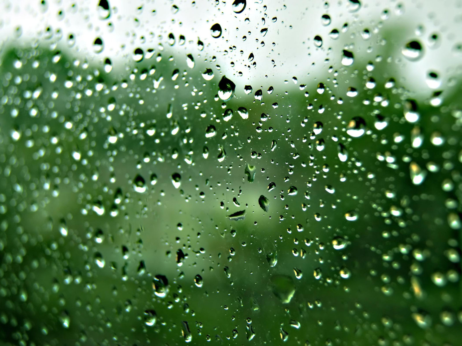 Rain Drops on Glass Wallpapers Desktop Wallpaper 1600x1200