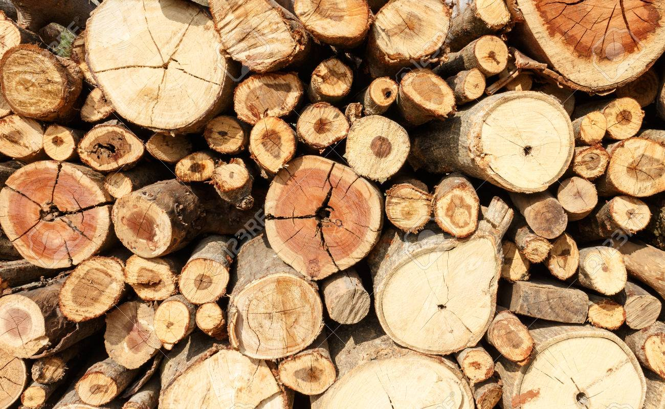 Stacked Firewood Background Stock Photo Picture And Royalty 1300x800