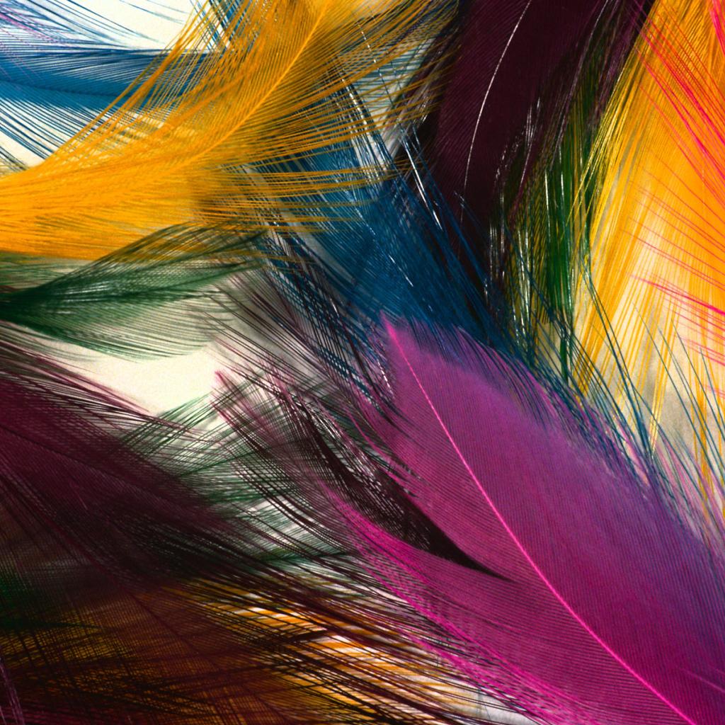Multi Colored Wallpape...