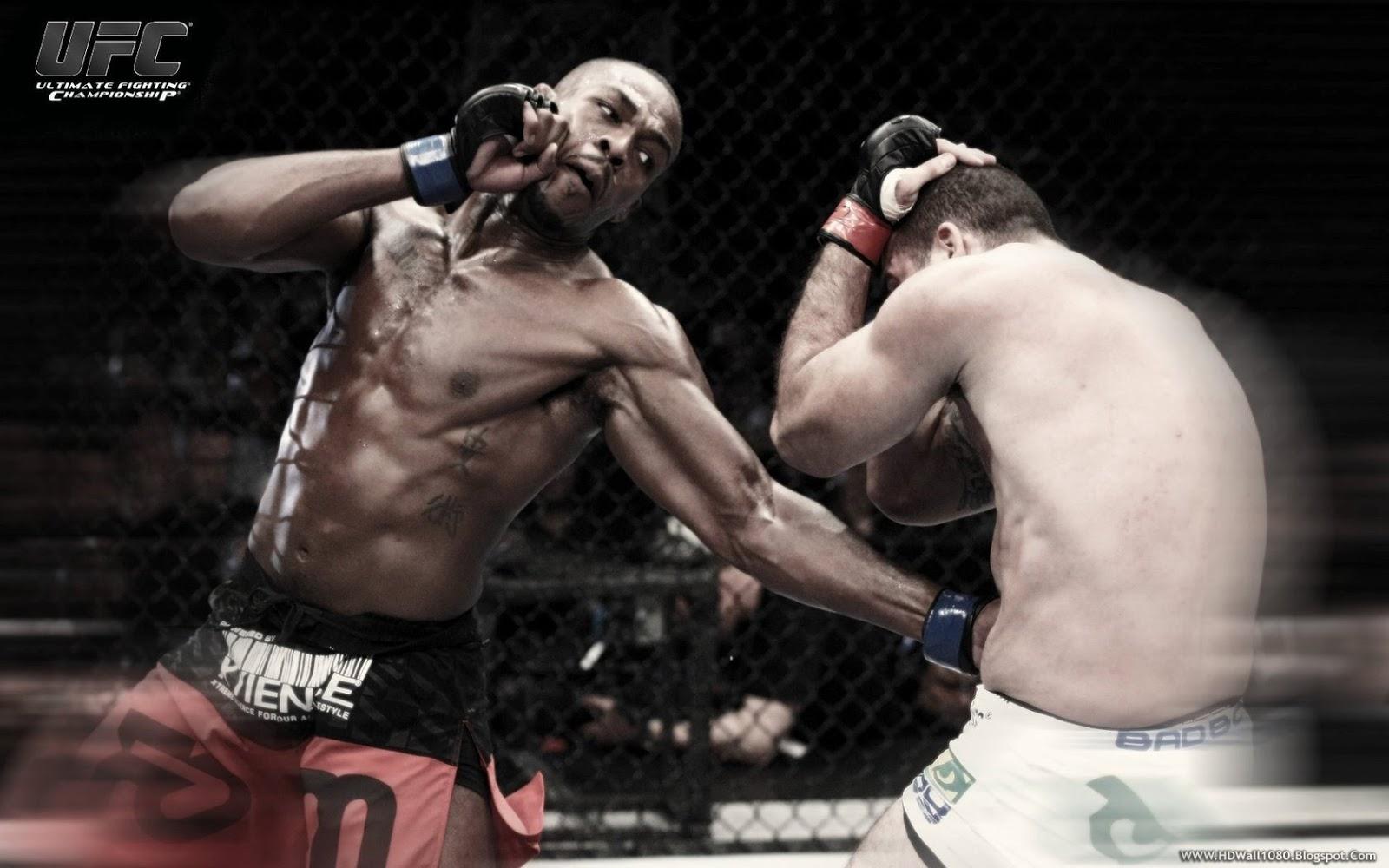 Mixed Martial Arts Toronto HD Wallpapers 1600x1000