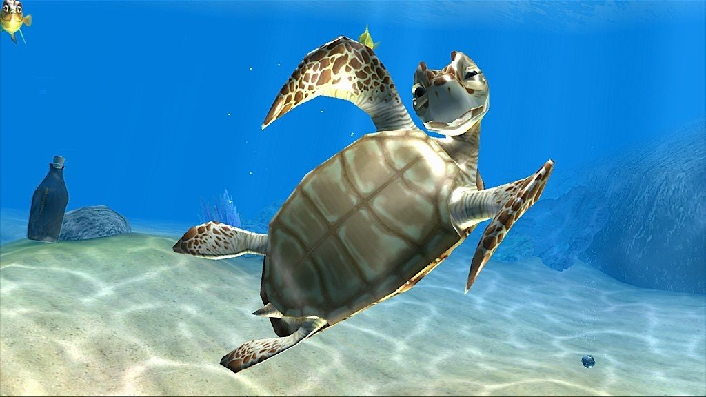 Funny 3d Animal Turtle Wallpapers Hd: HD Turtle Wallpaper