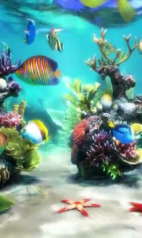 Download Aquarium 3 live wallpaper for your Android phone 480x800