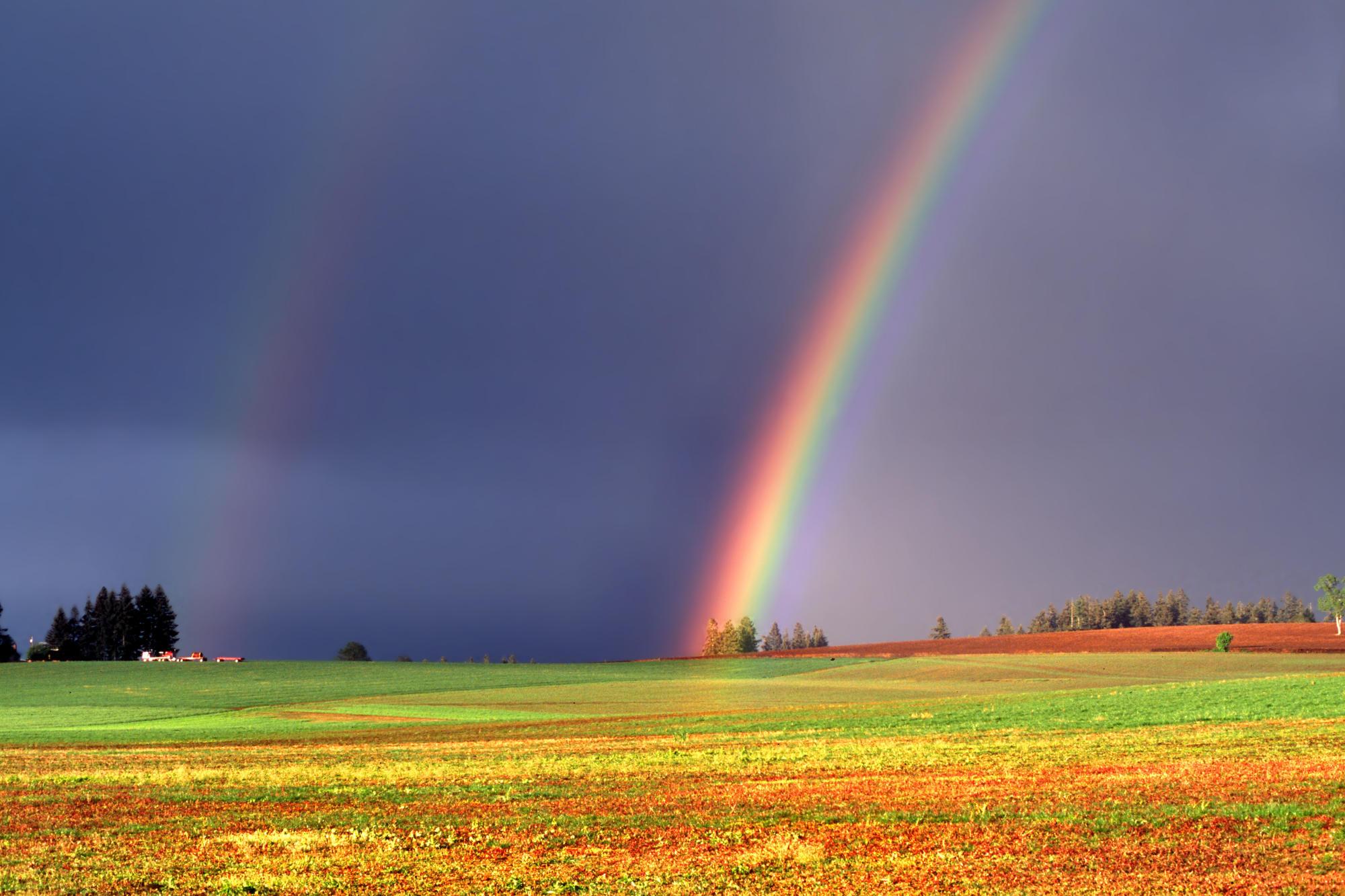 free rainbow wallpaper for computer wallpapersafari