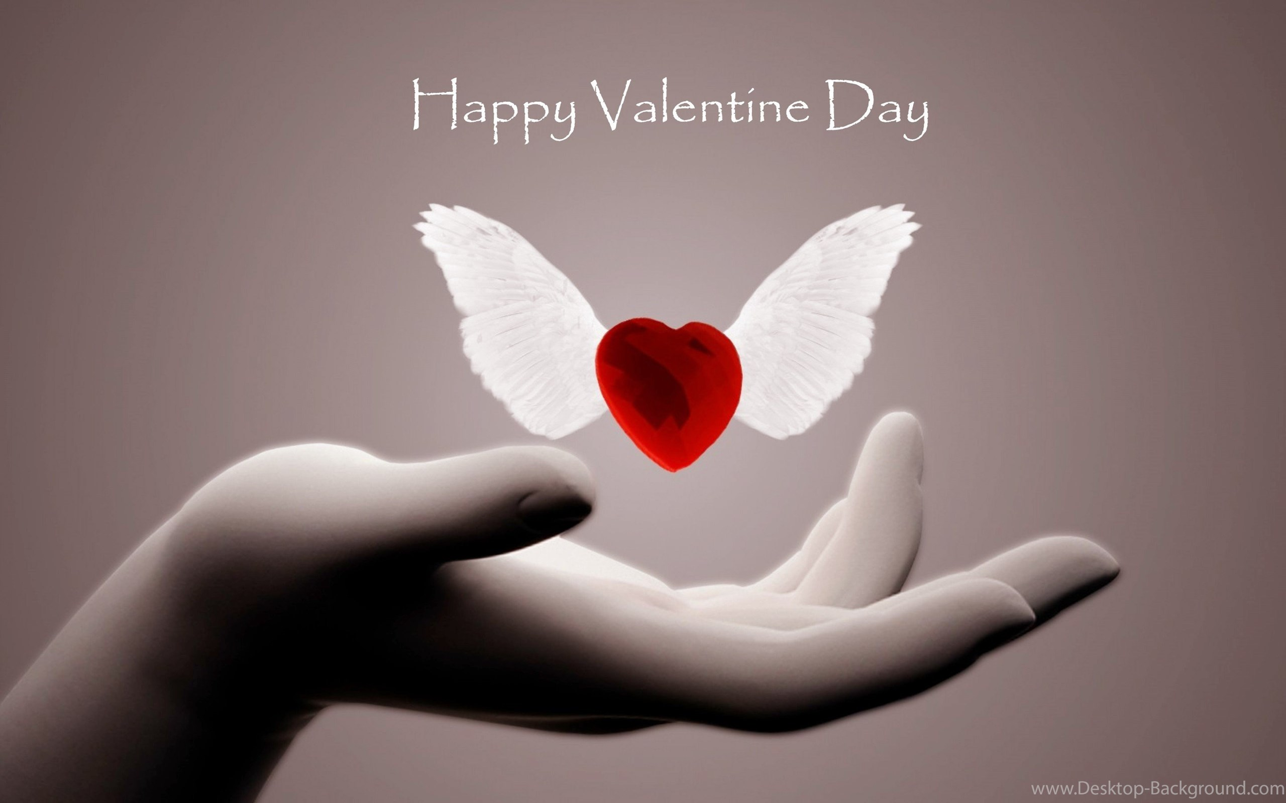 Widescreen   Valentine Day Images Hd Wallpaper Backgrounds 2560x1600