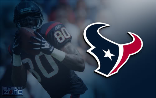 Wallpaper Zone Houston Texans Wallpaper   Texans Desktop Background 500x313