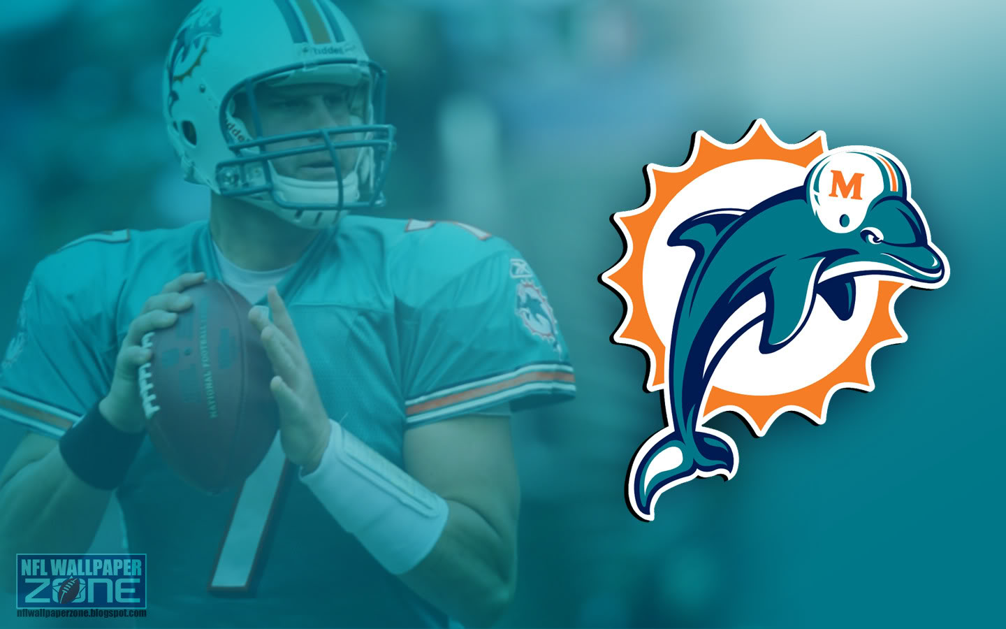 Enjoy this new Miami Dolphins wallpaper desktop background Miami 1440x900