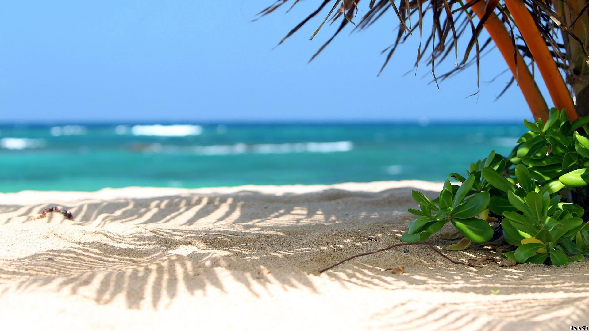 Beautiful Beach Vacation Rentals 1920x1080