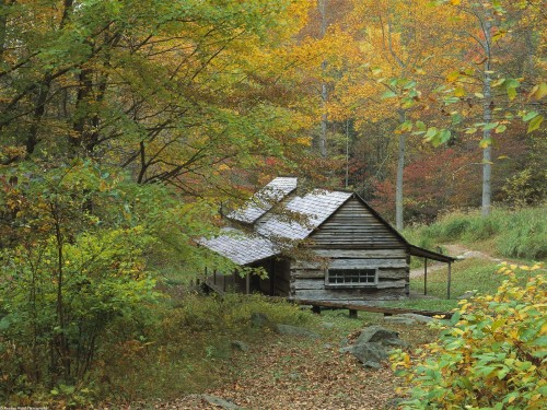 Log Cabin Screensaver Screensavers   Download Log Cabin 500x375