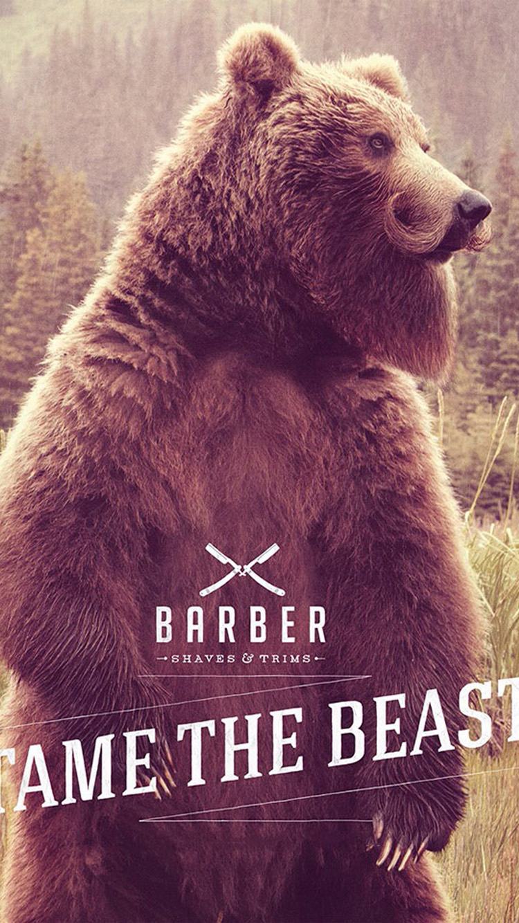 Bear beard iPhone 6 Wallpaper iPhone 6 Wallpapers 750x1334