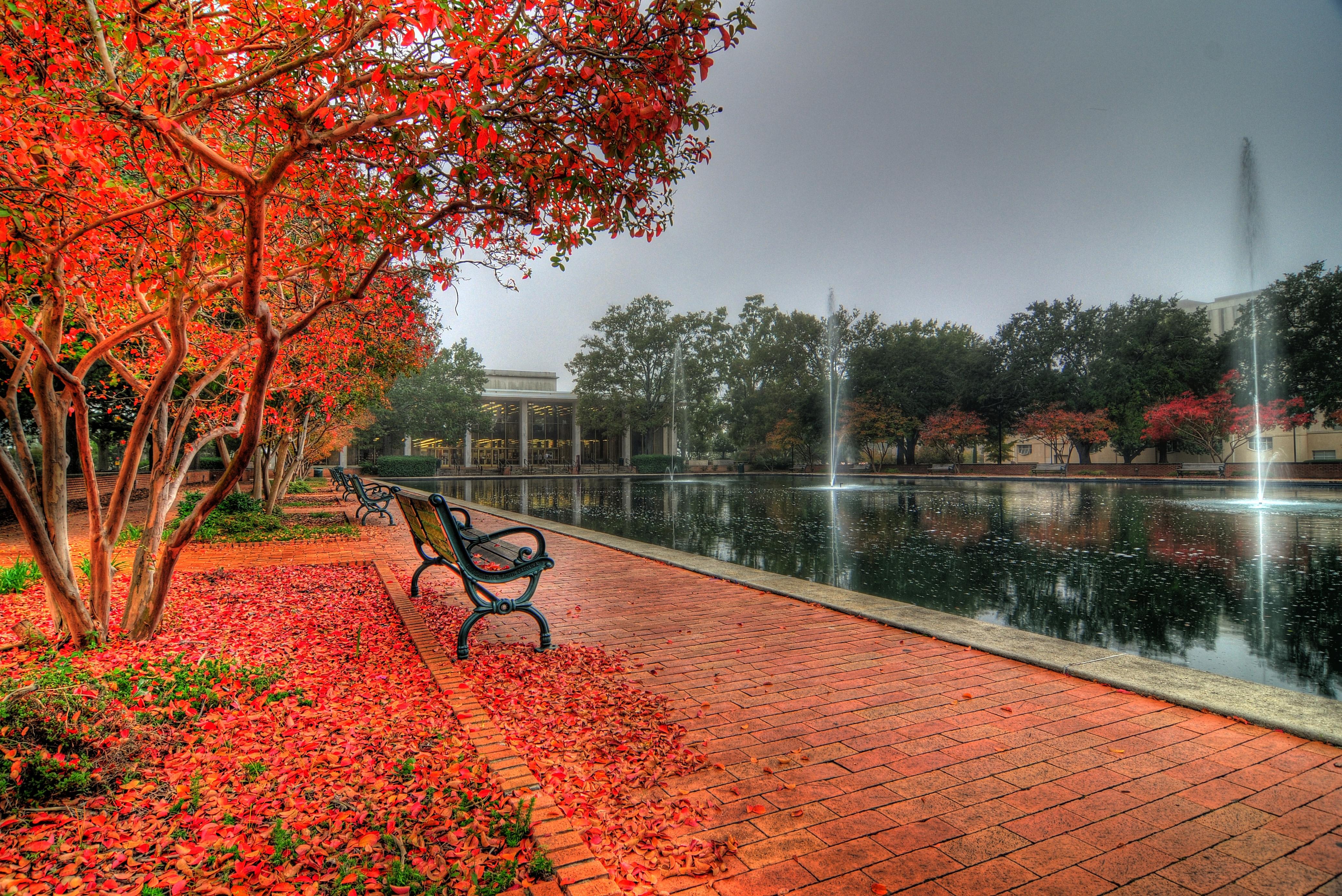 University of South Carolina Campus Autumn HDR Photos Ken Bloch 4153x2773