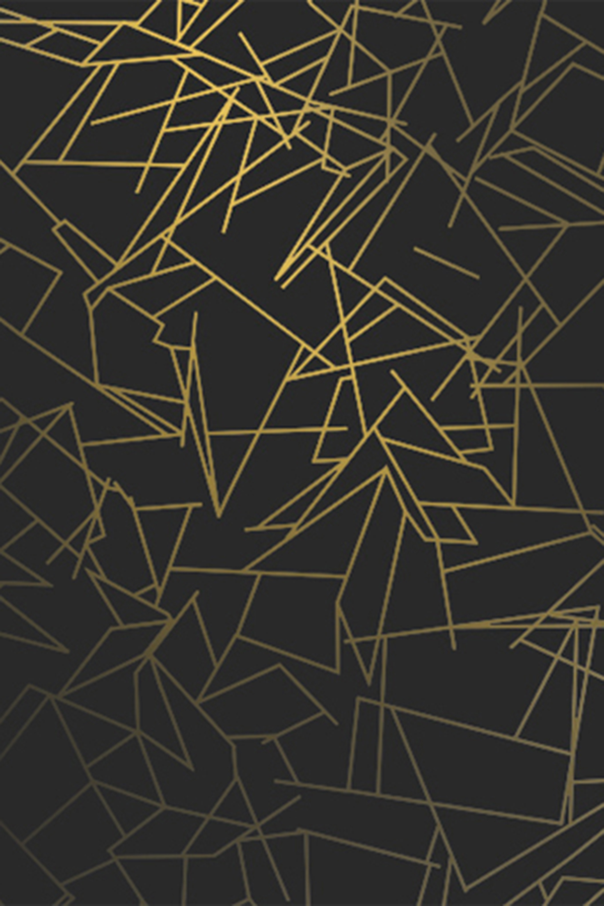 Angles Wallpaper   Black Gold Monument Interiors 1200x1800
