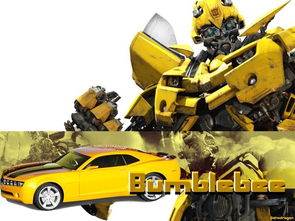 Bumble Bee Wallpaper Border by Kahners blog 600x450