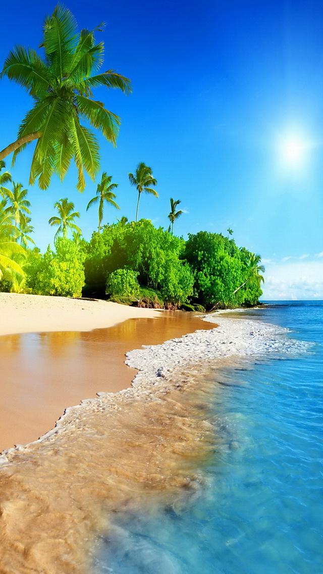 Tropical Beach Phone Wallpaper - WallpaperSafari