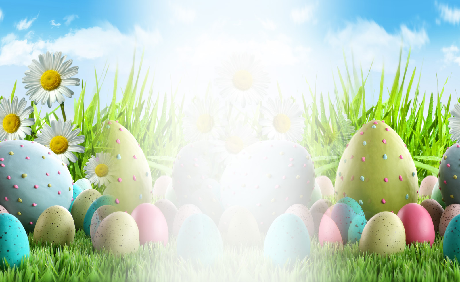 Easter Eggs Theme Wallpaper for Facebook Twitter and other 1600x981