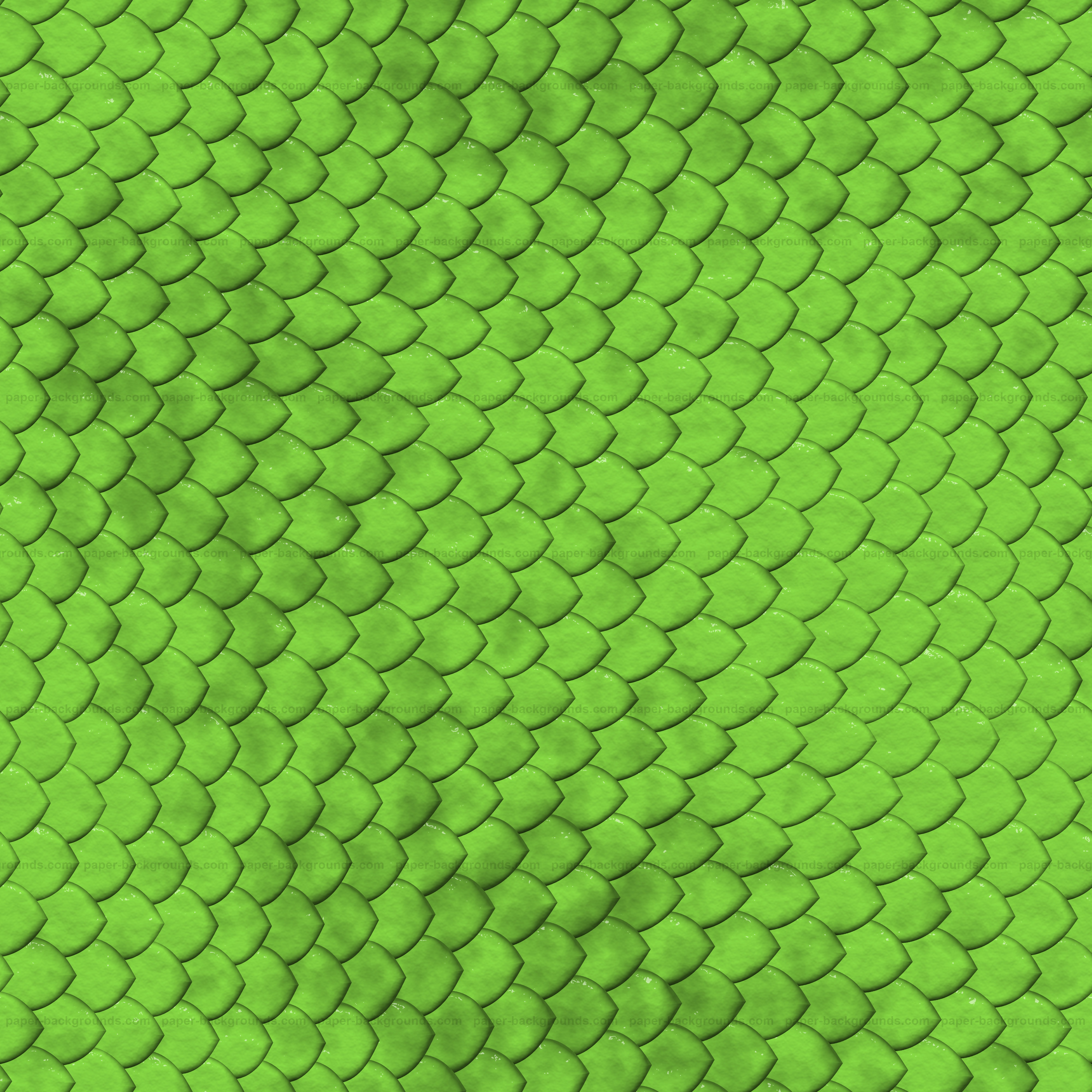 Snake Reptile Skin Texture 4000x4000