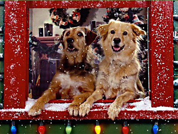 This is a great animated Christmas wallpaper featuring two cute 600x453
