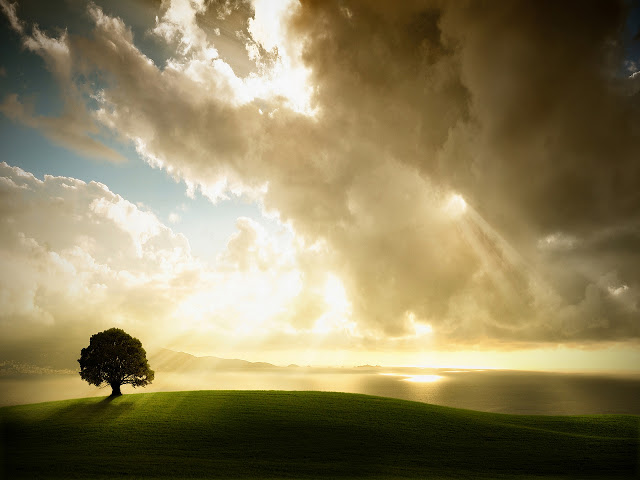 nature wallpaper 640x480: Best Nature Wallpapers Ever