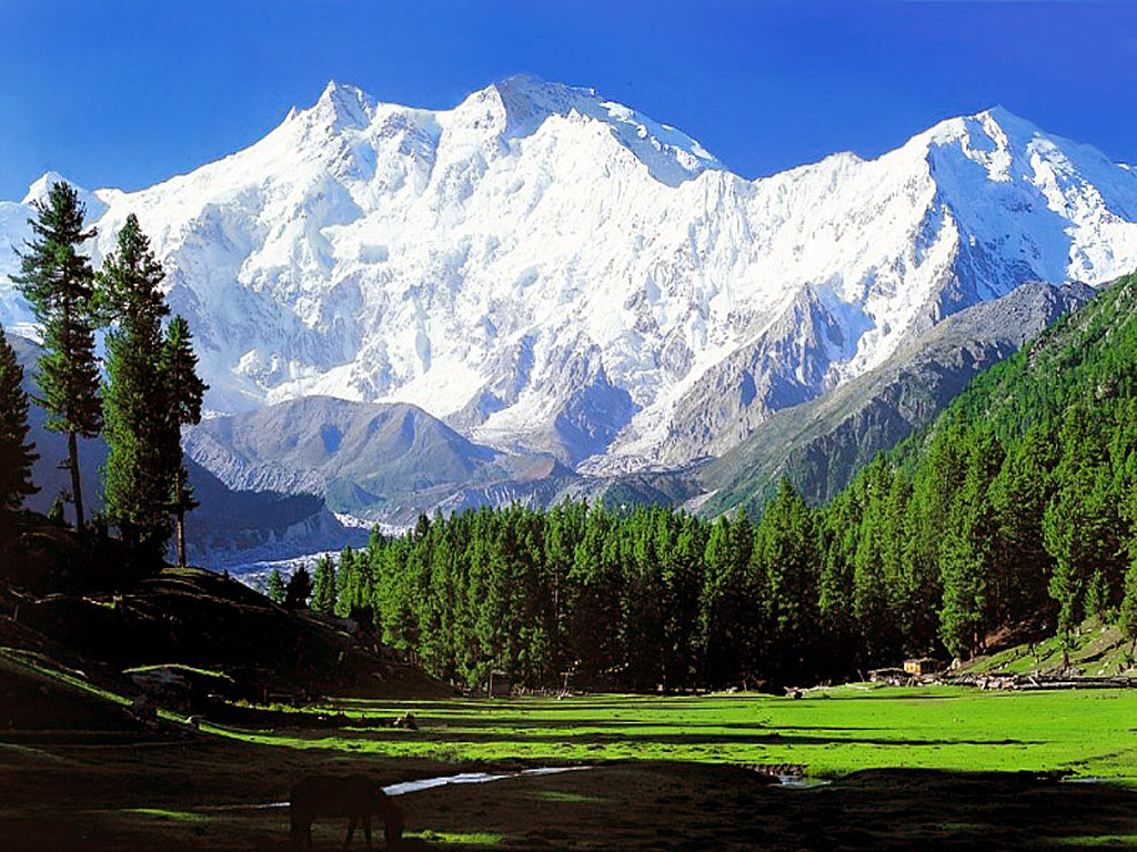 Himalayas HD Wallpapers High Definition Background 1024x768