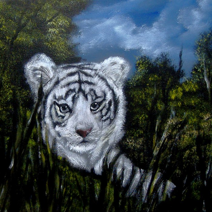 White Tiger Cubs Wallpapertiger Tigers Picture Bengal 700x700
