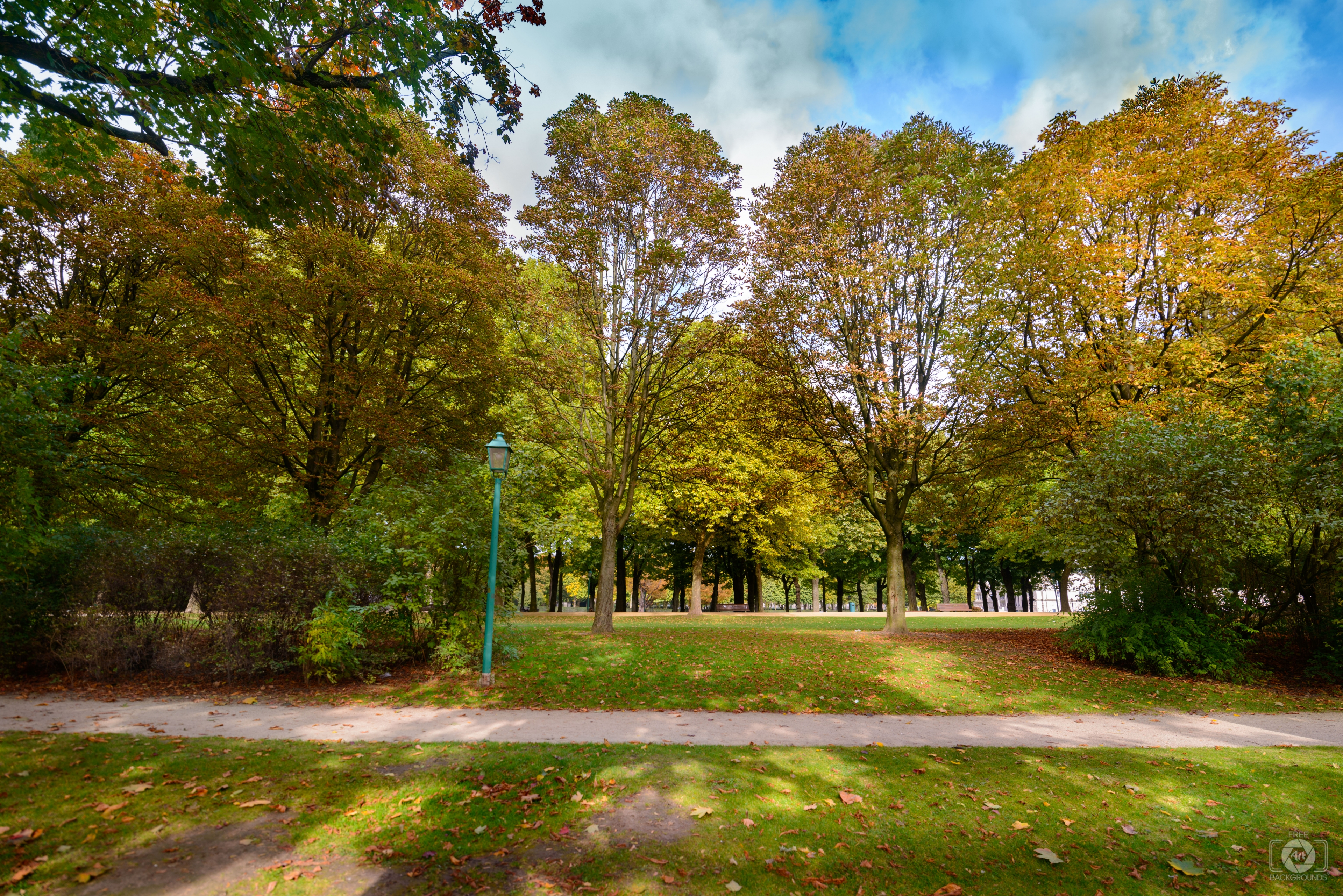 Autumn in Park Background   High quality Backgrounds 3840x2562