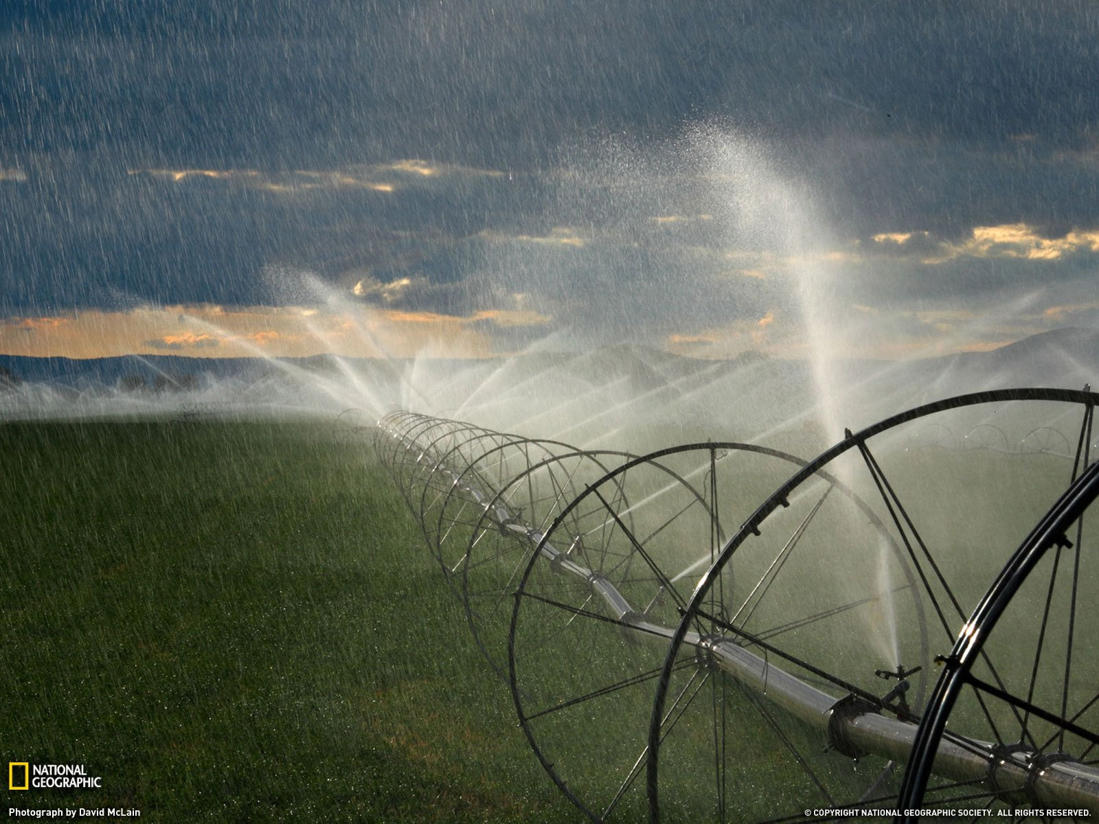 Irrigation on the fields wallpapers and images   wallpapers 1600x1200