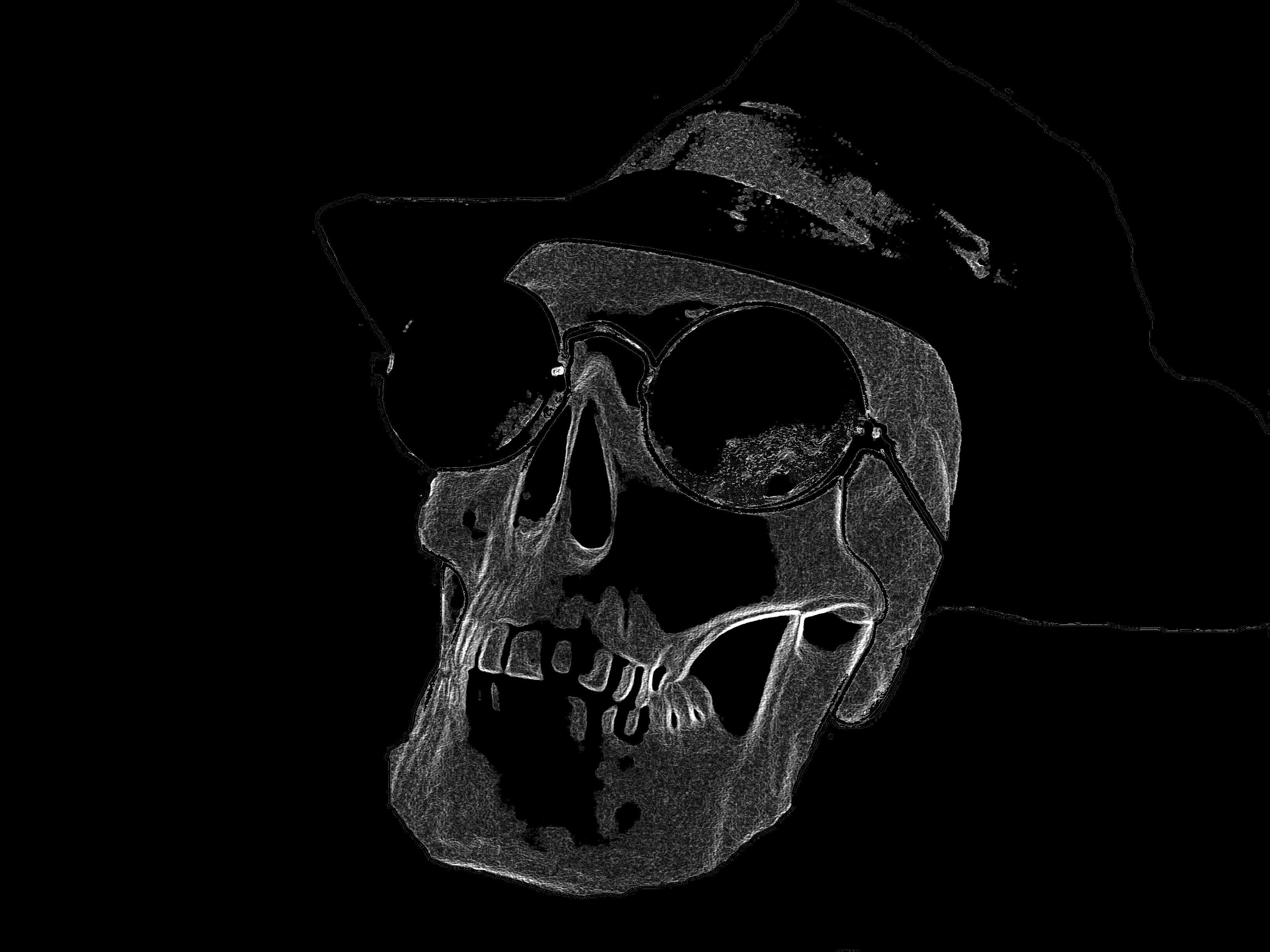 Computer wallpaper skull 3264x2448