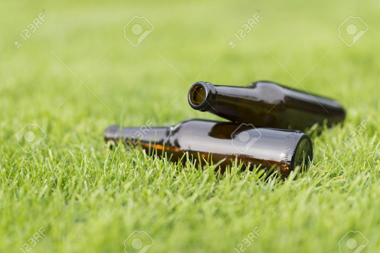 Empty Beer Bottles In A Grass Field With A Vague Background Stock 1300x867
