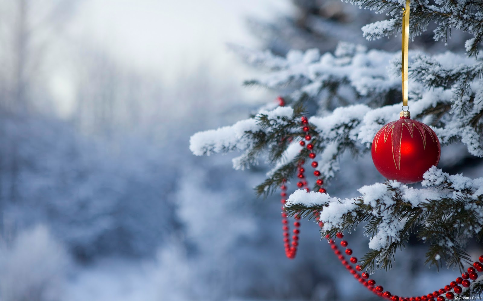 Christmas Desktop Backgrounds 30 Background Pictures 1600x1000